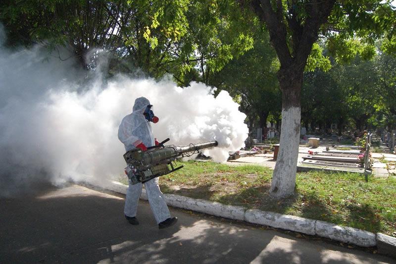 dengue-operacion800
