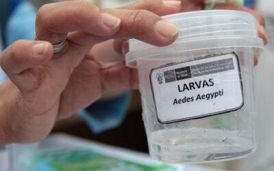 Trece personas murieron este año debido a la enfermedad del dengue, en diversas regiones del Perú, mientras otras cuatro defunciones son investigadas, confirmó el Ministerio de Salud (Minsa).