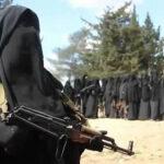 Fox News: Estado Islámico tiene base de operaciones cerca de frontera con EEUU