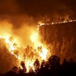 Youtube: incendios dejan 29 muertos y 5 mil damnificados en Siberia