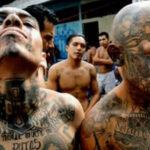 """El Salvador: Balaceraentresoldados y """"maras"""" deja 9 pandilleros muertos"""