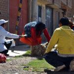 Rabia: declaran dos provincias en emergencia sanitaria