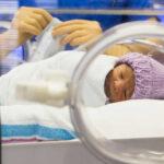 Algoritmo mantiene estable temperatura de bebés en incubadoras