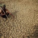 India: muertos por ola de calor superan las 1.000 personas