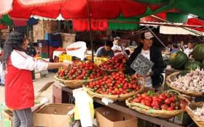La inflación en Lima Metropolitana llegó a 0.39 por ciento en abril, debido a los mayores precios en algunos alimentos.