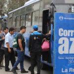 Corredor Azul: autorizan aumentar flota en Javier Prado