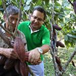 Vraem: cacao, café y piña reemplazarán a sembríos ilegales de coca