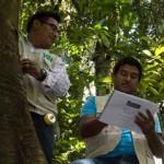 Inventario Nacional Forestal requiere de autoridades y comunidad
