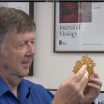 Desarrollan vacuna que genera anticuerpos del VIH en ratones