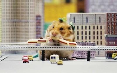 """YouTube muestra en el séptimo capítulo de su popular serie Tiny Hamster a una mascota vuelta en un depredador gigante que se come una """"ciudad entera."""