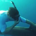 Instagram: Zac Efron nada entre tiburones tigre (VIDEO)
