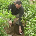 Colombia: presentan avances tecnológicos para agricultura en Agroexpo
