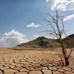Encuesta: cambio climático es ya la principal preocupación mundial