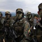 FARC: Cese del fuego se halla en peligro por aumento de ofensiva militar