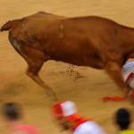 España: francés muere al ser corneado en encerrona taurina