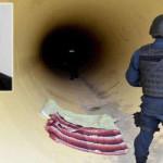 """""""El Chapo"""" Guzmán: organizó huelga de reos para facilitarsu fuga"""