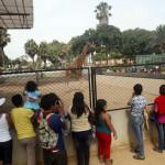 Fiestas Patrias: conoce las actividades en el Parque de las Leyendas