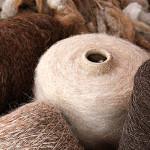 Perú es primer productor de fibra de alpaca en el mundo