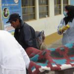La Oroya: Accidente de tránsito deja ocho heridos