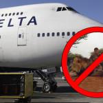 Estados Unidos: tres aerolíneas no transportarán trofeos de caza