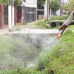Nicaragua: inician un plan especial contra el dengue y chikunguña