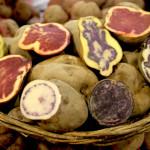 Gastronomía peruana tiene siglos de tecnología e innovación