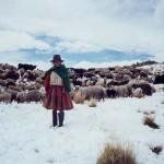 Arequipa: zonas altas tendrán temperaturas de -18 grados
