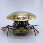 Rusia: una cucaracha robot el último grito en biotecnología