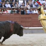 España: Madrid retira subvención a escuela de tauromaquia