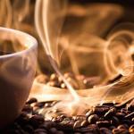 Brasil: descubren proteína del café con efecto similar a la morfina