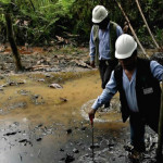 Brasil: Greenpeace protesta contra subasta petrolera en la Amazonía