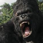 Kong Skull Island: imágenes del set del nuevo King Kong