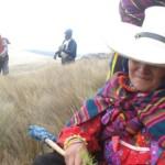 Lambayeque reforestará bosques en las zonas altoandinas