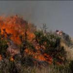 Machu Picchu: incendios cerca a ciudadela no afectan al turismo