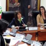 Congreso cita a ministra Magali Silva ante posible subida de medicamentos