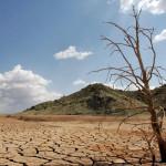 Cambio climático: mitad del planeta puede ser árido en 2100
