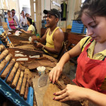 Cuba: sector tabacalero perdió unos 150 millones de dólares por embargo