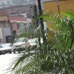 Senamhi: Lima soportará hasta 29 grados de temperatura