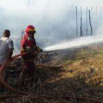 Sullana: Incendio redujo a escombros 50 viviendas