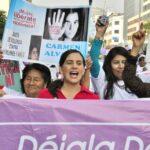Despenalización del aborto: Insistirán en proyecto de ley