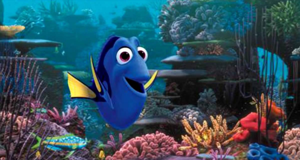 Buscando A Nemo Afiche Oficial De Buscando A Dory Crónica