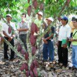 Devida implementará oficina de coordinación en el valle del Monzón