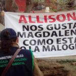Magdalena: Fiscalía constató que cortaron árboles con hachas