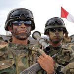 Fuerzas Armadas realizan ejercicios en tres regiones del sur
