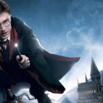 Action Fest: Fans de Harry Potter participarán en festival