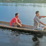 Congreso amplia beneficios tributarios para la Amazonía