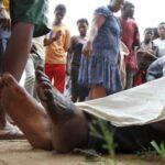Burundi: Ejército eleva a 87 los muertos en enfrentamientos