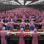 China: Producción industrial crece un 6.2 % en noviembre