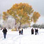 México: Persisten bajas temperaturas y potencial de nevadas