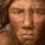 El Homo sapiens tiene una cara única